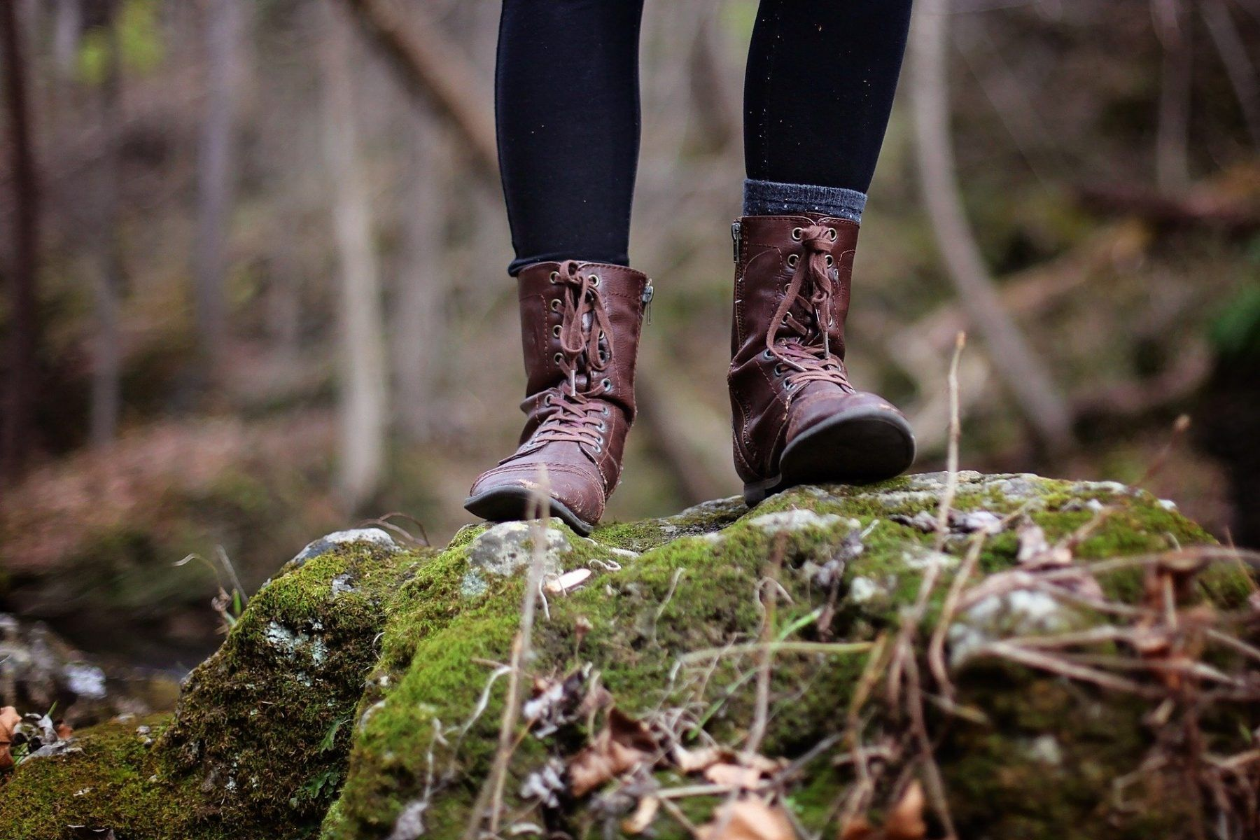 An image of a nature hike